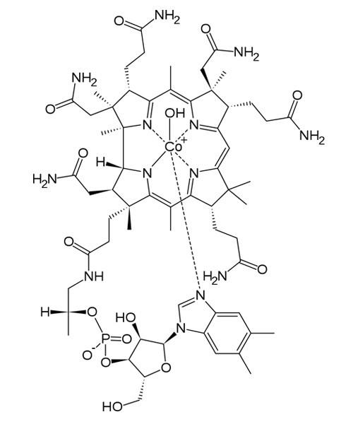 Vitamin B12 Hydroxocobalamin
