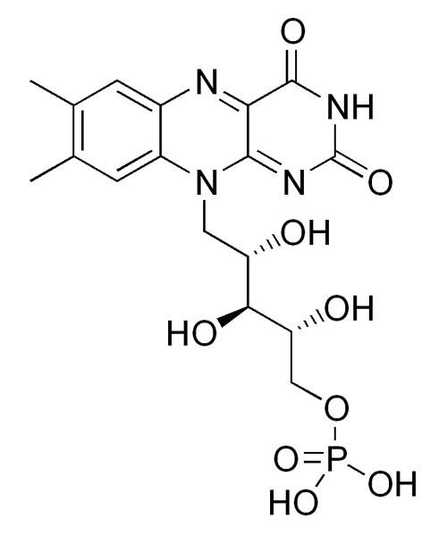 Vitamin B2 Riboflavin 5 Phosphate